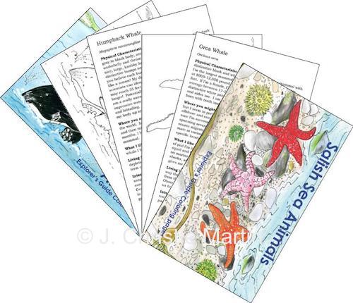 Coloring Books, Covers, and Pages